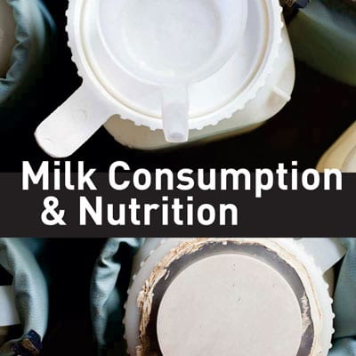 consumption-and-nutrition