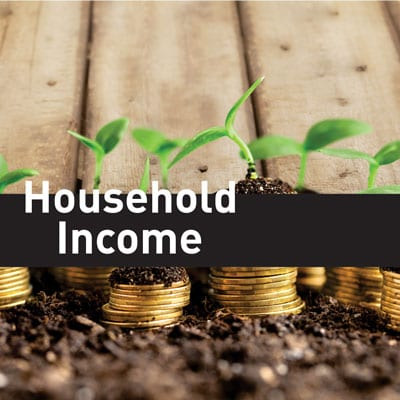 house-hold-income